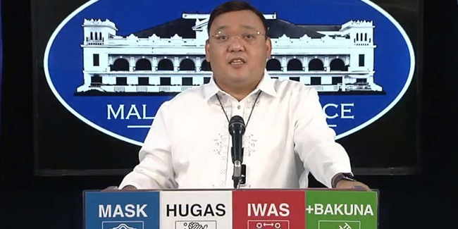 """Harry Roque on COA reports on government agencies: """"Cool po muna tayo"""""""