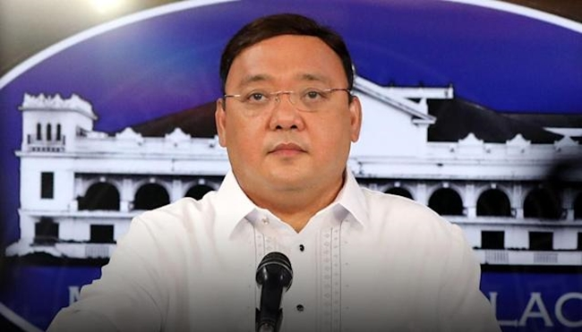 Roque on International Law Commission